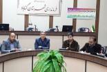پارلمان مشورتی جوانان گناباد تا یک ماه آینده راه اندازی می شود